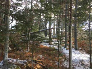 Photo 7: Lot 100 Beach Point Road in Martins River: 405-Lunenburg County Vacant Land for sale (South Shore)  : MLS®# 202002409