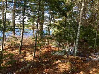 Photo 8: Lot 100 Beach Point Road in Martins River: 405-Lunenburg County Vacant Land for sale (South Shore)  : MLS®# 202002409