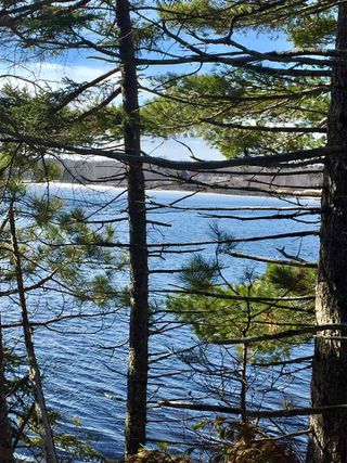 Photo 9: Lot 100 Beach Point Road in Martins River: 405-Lunenburg County Vacant Land for sale (South Shore)  : MLS®# 202002409