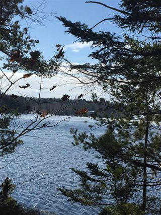 Photo 5: Lot 100 Beach Point Road in Martins River: 405-Lunenburg County Vacant Land for sale (South Shore)  : MLS®# 202002409