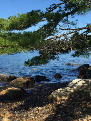 Photo 2: Lot 100 Beach Point Road in Martins River: 405-Lunenburg County Vacant Land for sale (South Shore)  : MLS®# 202002409