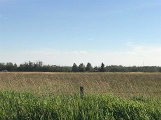 Photo 16: 57525 Rg Rd 214: Rural Sturgeon County Rural Land/Vacant Lot for sale : MLS®# E4192257