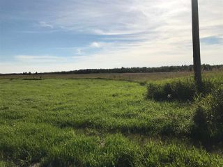 Photo 35: 57525 Rg Rd 214: Rural Sturgeon County Rural Land/Vacant Lot for sale : MLS®# E4192257