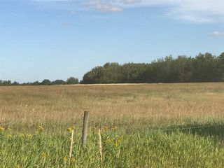 Photo 12: 57525 Rg Rd 214: Rural Sturgeon County Rural Land/Vacant Lot for sale : MLS®# E4192257