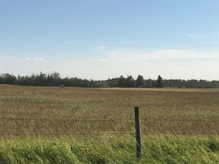 Photo 7: 57525 Rg Rd 214: Rural Sturgeon County Rural Land/Vacant Lot for sale : MLS®# E4192257