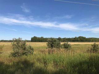 Photo 22: 57525 Rg Rd 214: Rural Sturgeon County Rural Land/Vacant Lot for sale : MLS®# E4192257