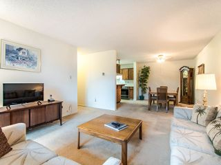 "Photo 3: 204 32910 AMICUS Place in Abbotsford: Central Abbotsford Condo for sale in ""ROYAL OAKS"" : MLS®# R2474373"