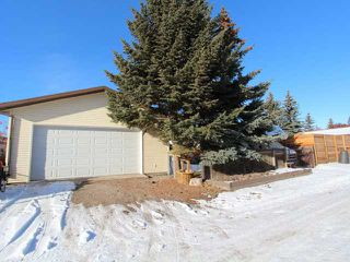 Photo 16: 46 SYLVAN Place SE: Airdrie Residential Detached Single Family for sale : MLS®# C3545998