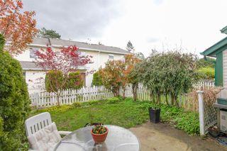 Photo 20: 103 20675 118TH AVENUE in Maple Ridge: Southwest Maple Ridge Townhouse for sale : MLS®# R2159410