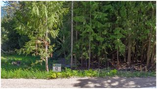 Photo 62: PLA 6810 Northeast 46 Street in Salmon Arm: Canoe Vacant Land for sale : MLS®# 10179387