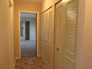 Photo 10:  in Abbotsford: Condo for sale : MLS®# R2386480