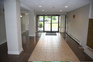 Photo 4:  in Abbotsford: Condo for sale : MLS®# R2386480