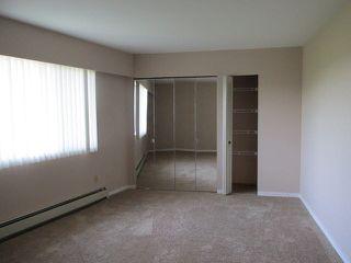 Photo 11:  in Abbotsford: Condo for sale : MLS®# R2386480