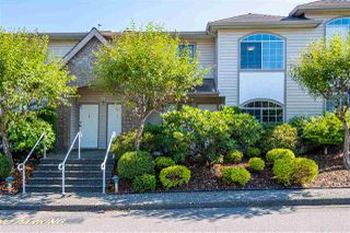Main Photo: 10 3110 TRAFALGAR Street in Abbotsford: Central Abbotsford Townhouse for sale : MLS®# R2390754