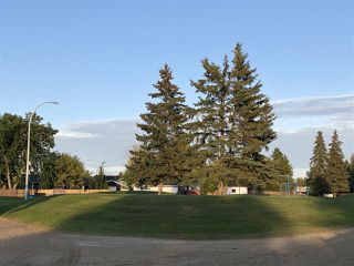 Photo 28: 146 Maple Crescent: Wetaskiwin House for sale : MLS®# E4172917
