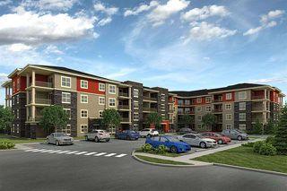 Photo 1: 204 18122 77 Street NW in Edmonton: Zone 28 Condo for sale : MLS®# E4168572