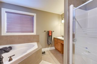 Photo 23: 8096 SHASKE Drive in Edmonton: Zone 14 House for sale : MLS®# E4187000