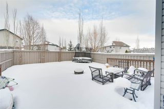 Photo 35: 8096 SHASKE Drive in Edmonton: Zone 14 House for sale : MLS®# E4187000