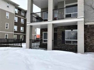 Photo 12: 1105 7339 SOUTH TERWILLEGAR Drive in Edmonton: Zone 14 Condo for sale : MLS®# E4189621