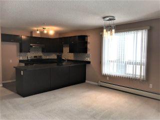 Photo 5: 1105 7339 SOUTH TERWILLEGAR Drive in Edmonton: Zone 14 Condo for sale : MLS®# E4189621