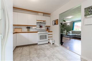 Photo 19: 31791 HILLCREST Avenue in Mission: Mission BC House for sale : MLS®# R2453820