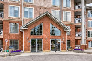 Photo 25: 325 8535 BONAVENTURE Drive SE in Calgary: Acadia Apartment for sale : MLS®# A1011393