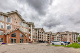 Photo 26: 325 8535 BONAVENTURE Drive SE in Calgary: Acadia Apartment for sale : MLS®# A1011393