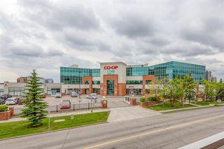 Photo 27: 325 8535 BONAVENTURE Drive SE in Calgary: Acadia Apartment for sale : MLS®# A1011393