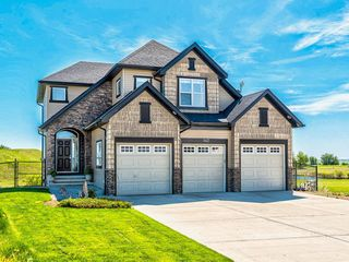 Main Photo: 142 Speargrass Crescent: Carseland Detached for sale : MLS®# A1021947