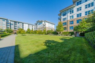 """Photo 3: 519 9399 ALEXANDRA Road in Richmond: West Cambie Condo for sale in """"ALEXANDRA COURT"""" : MLS®# R2505266"""
