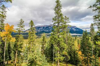 Photo 17: 232 104 Armstrong Place: Canmore Apartment for sale : MLS®# A1042216