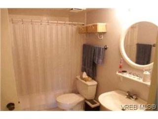 Photo 8:  in VICTORIA: Vi Fairfield East Condo Apartment for sale (Victoria)  : MLS®# 386948