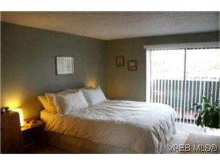 Photo 5:  in VICTORIA: Vi Fairfield East Condo Apartment for sale (Victoria)  : MLS®# 386948