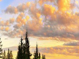 Photo 2: # 44 3400 DEVONSHIRE AV in Coquitlam: Burke Mountain Townhouse for sale : MLS®# V1138831