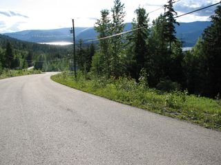 Photo 4: 5049 Ivy Rd: Eagle Bay Land Only for sale (SHuswap)  : MLS®# 10201912