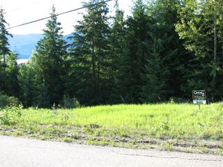 Photo 3: 5049 Ivy Rd: Eagle Bay Land Only for sale (SHuswap)  : MLS®# 10161963