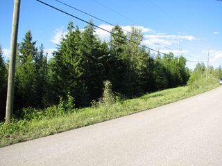 Photo 5: 5049 Ivy Rd: Eagle Bay Land Only for sale (SHuswap)  : MLS®# 10161963