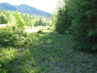 Photo 9: 5049 Ivy Rd: Eagle Bay Land Only for sale (SHuswap)  : MLS®# 10201912