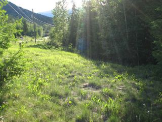 Photo 11: 5049 Ivy Rd: Eagle Bay Land Only for sale (SHuswap)  : MLS®# 10161963