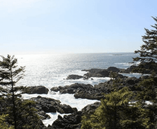 Photo 3: 548 Marine Drive: Ucluelet Land for sale (Islands-Van. & Gulf)  : MLS®# 450879
