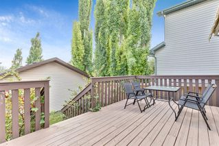 Photo 24: 416 COUNTRY HILLS Drive NW in Calgary: Country Hills Detached for sale : MLS®# A1014973