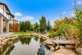 Photo 10: 2735 77 Street SW in Calgary: Springbank Hill Detached for sale : MLS®# A1053304