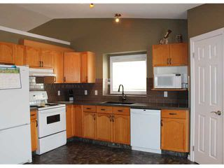 Photo 3: 166 TIPPING Close SE: Airdrie Residential Detached Single Family for sale : MLS®# C3512379