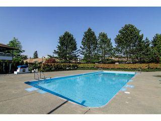 Photo 18: # 119 20391 96 AV in Langley: Walnut Grove Condo for sale : MLS®# F1411068