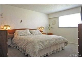 Photo 4:  in VICTORIA: SE Cedar Hill Single Family Detached for sale (Saanich East)  : MLS®# 398561
