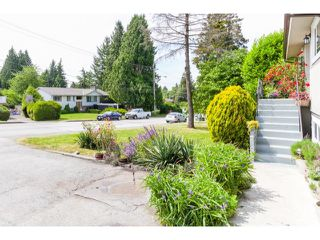 Photo 3: 11135 90TH AV in Delta: Annieville House for sale (N. Delta)  : MLS®# F1442092