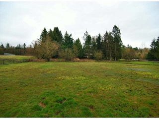 Main Photo: 1858 216th Street in Langley: Campbell Valley House for sale : MLS®# F1406625