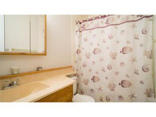 Photo 22: 33 Spring Haven Cres SE: Airdrie House for sale : MLS®# C4102976