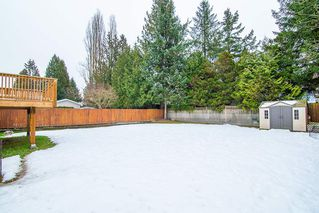 Photo 19: 15032 BLUEBIRD CRESCENT in Surrey: Bolivar Heights House for sale (North Surrey)  : MLS®# R2344723