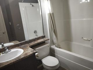 Photo 17: 131 2098 Blackmud Creek Drive in Edmonton: Zone 55 Condo for sale : MLS®# E4167547